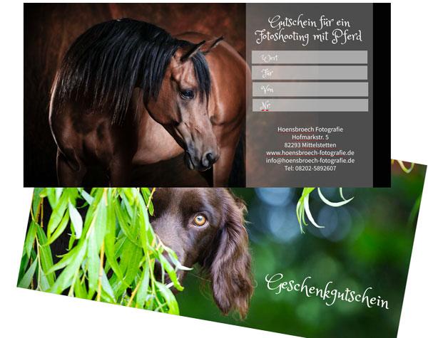 Pferdefotografie Bayern und Hundefotografie Bayern Geschenkgutschein